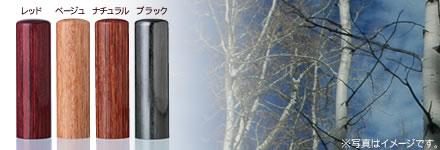 玄武(けんぶ)(黒彩樺)
